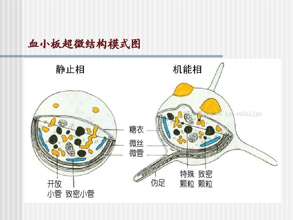 供应东莞环氧树脂自流平地板,图片
